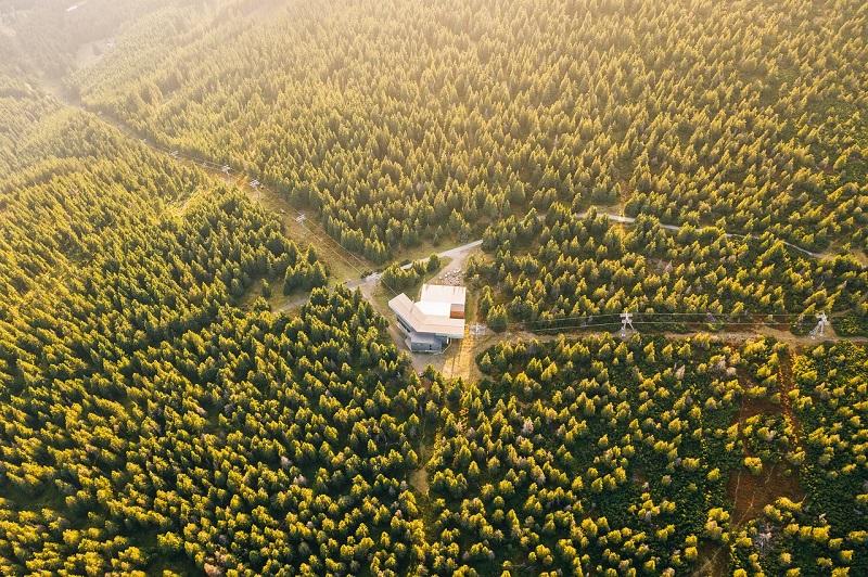 広大な森の中の一軒家。