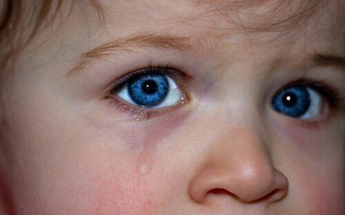 つぶらな青い瞳。