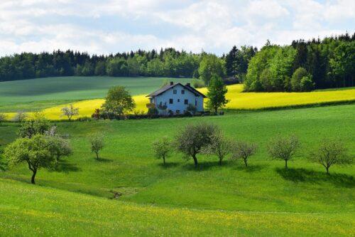 草原に一軒家。